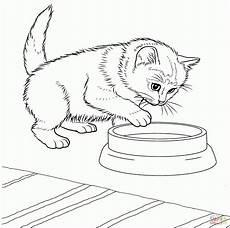 Katzen Ausmalbilder Kostenlos Ausdrucken Ausmalbilder Katzen Malvorlagen Kostenlos Zum Ausdrucken
