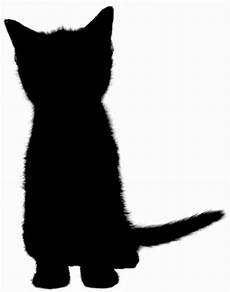 silhouette cat free stock photo domain pictures