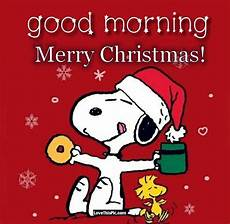 snoopy good morning merry christmas pictures photos and images for facebook pinterest