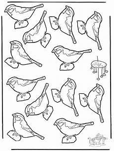 ausmalbilder winter vogel malvorlagen