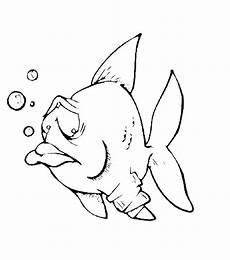fische 00297 gratis malvorlage in fische tiere ausmalen