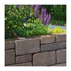 Beton Pflanzkübel Als Mauer - mit beidseitig attraktiver optik geeignet zur