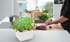 jardin d intérieur appartement 85532 essentielb jardin d int 233 rieur boulanger