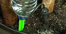 pflanzen bewässern mit plastikflasche wandgestaltung wohnzimmer vertikalen garten selber bauen projekte f rs haus zum selbermachen