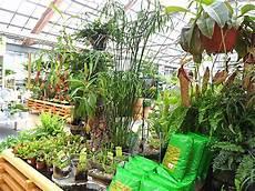 jardinerie dehner 224 rastatt allemagne
