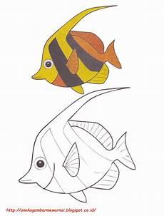 Gambar Mewarnai Ikan Bendera Untuk Anak Paud Dan Tk