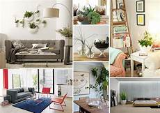 Living Room Home Decor Ideas With Plants by Decorating With Houseplants Zee S Likes House