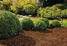 Garten Mit Rindenmulch Gestalten - infos zu stein mulch und kieswegen