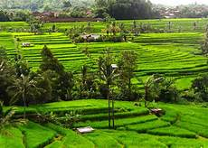 Limakaki Menelusuri Keindahan Alam Indonesia Yang Mempesona