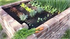 hochbeet richtig bepflanzen sternensinn garten und mehr august 2015