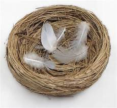 empty nest syndrom empty nest how to deal medicare pathways