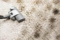 Teppich Bzw Teppichboden Richtig Reinigen Wie