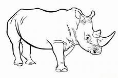 Bilder Zum Ausmalen Nashorn Malvorlagen Zum Ausmalen Ausmalbilder Nashorn Gratis 2