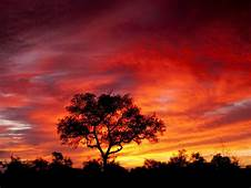 South Africa Savna Sky With Red Cloud Eclipse Sunset