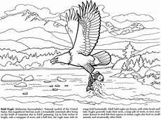 alaska animals coloring pages 16895 alaskan wildlife coloring book dover publications coloring pages edition