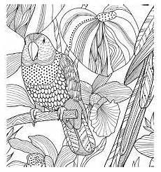 Malvorlagen Tiere Mosaik Bildergebnis F 252 R Mosaik Vorlagen Zum Ausdrucken Tiere