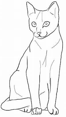 Malvorlagen Katze Quiz Pin Auf Cats