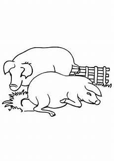 Ausmalbilder Schweine Bauernhof Ausmalbilder Schweine Auf Dem Bauernhof Bauernhof