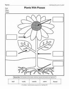 types of plants worksheets for grade 2 13744 results for plants worksheet guest the mailbox con im 225 genes ciencia preescolar partes