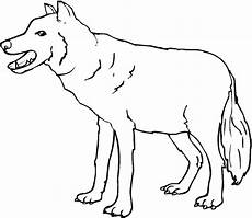 Malvorlage Wolf Einfach Konabeun Zum Ausdrucken Ausmalbilder Wolf 26235