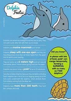 malvorlagen delfin lyrics kinder zeichnen und ausmalen