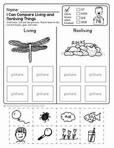 freebie no prep kindergarten science doodle printables t e a c h kindergarten science