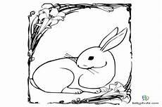 Ausmalbild Hase Im Stall Ausmalbilder Kleine Hasen