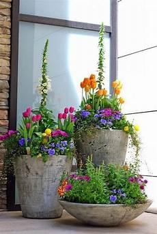 Pflanzkübel Modern Bepflanzen - pflanzk 252 bel echte hingucker im garten 14 tipps f 252 r