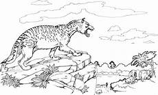 tiger auf einem felsen ausmalbild malvorlage tiere