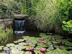 d ornement pour jardin bassin ornement jardin bassin de jardin