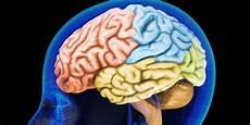 Puasa Dan Kesehatan Otak Kabari News