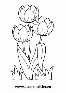 Ausmalbilder Blumen Tulpen Ausmalbilder Drei Tulpen Blumen Malvorlagen Ausmalen
