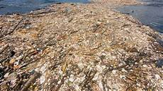 The Great Pacific Garage Patch by The Great Pacific Garbage Patch Is Now The Size Of