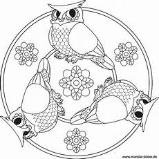 Malvorlagen Mandala Eulen Eulen Malvorlage Kinder Coloring And Malvorlagan