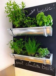 kräutergarten küche selber machen kreative regenrinne f 252 r den k 252 chen kr 228 utergarten diy
