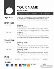 11 free basic resume templates in microsoft word doc