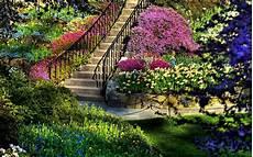 Free Desktop Wallpaper Flower Garden by Garden Pictures For Backgrounds Wallpaper Cave