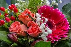 Photo Gratuite Bouquet Gerbera Image