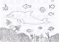 delphin malvorlage einfach