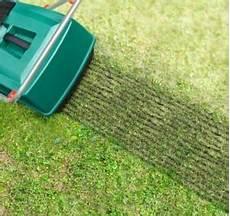 Rasenpflege Rasen D 252 Ngen Rasen Vertikutieren Rasen Pflegen