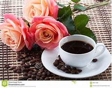 fiori coffee flowers and coffee stock image image of drink coffe