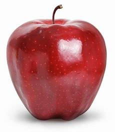 our apple types crisp flavorful stadelman fruit