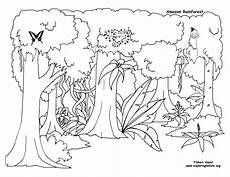 animals of the rainforest coloring pages 17165 reduced tropical rainforest coloring page happy pages drawing to 11405 2972 rainforest