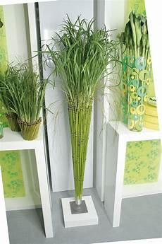kunstgras gras bambus kunstbambus kunstpflanze 2m hoch ebay