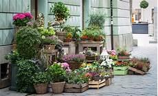negozio fiori come aprire negozio di fiori