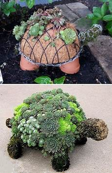 How To Make A Succulent Turtle Gardening And Path