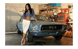 27 Best HOT CARS Images  Hot Cars Mustang Ford