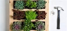 giardino verticale fai da te giardino verticale fai da te casa fai da te