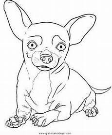 Ausmalbilder Schleich Hunde Chihuahua 8 Gratis Malvorlage In Hunde Tiere Ausmalen