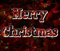 merry christmas lights pictures merry christmas tree lights free domain pictures